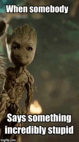 Groot's Had Enough of Your Stupidity - Imgflip