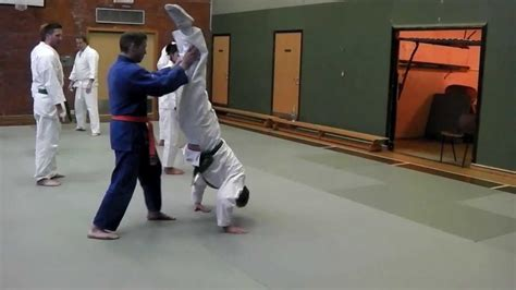 Gymnastic Partner Drills for Martial Artists - YouTube in 2020