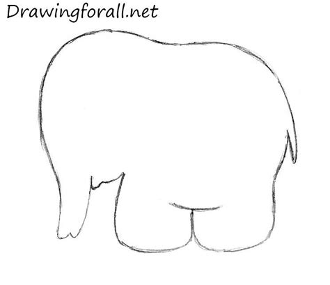 How To Draw An Elephant for Kids | Drawingforall