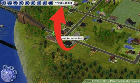 How to Grow Plantbaby in the Sims 2: 4 Steps (with Pictures)