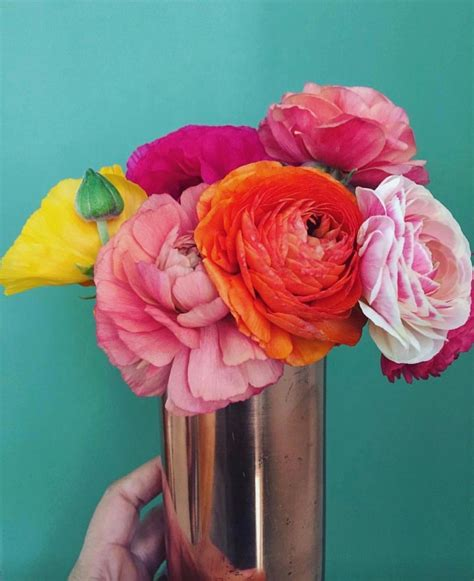 Pin by Everage Design on Favorite florals | Color palate